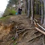 MTB afdaling bossen bij Leuven