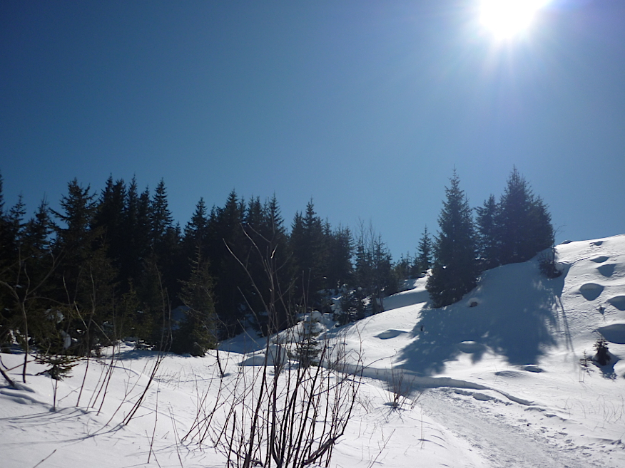 Panorama loipe rechts route